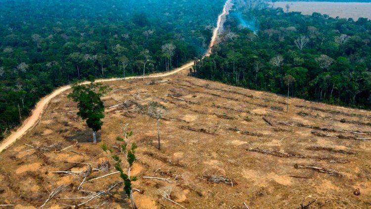 Vista aérea da Amazônia perto de Porto Velho, em Rondônia, registrada em 24 de agosto de 2019  (AFP or licensors)